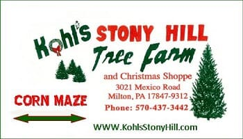 Kohl's Stony Hill Tree Farm - Family Four Pack Corn Maze Passes