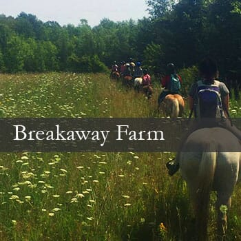 Breakaway Farm-1