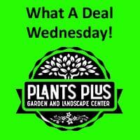 Plants Plus