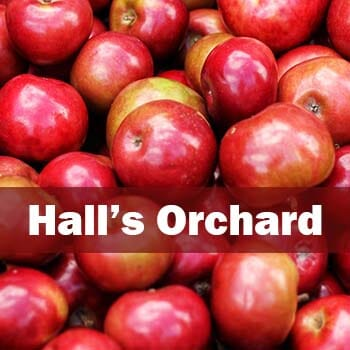 Hall's Orchard-1
