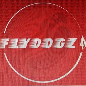 FlyDogz