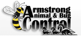 Residential Animal & Bug Treatment!-1