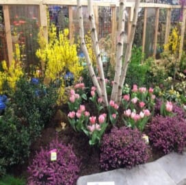 BOGO Admission to the Plantasia Garden & Landscape Show March 21st - 24th at The Fairgrounds Event Center in Hamburg!