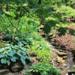 Gardens of Northeast Ohio Bus Trip!