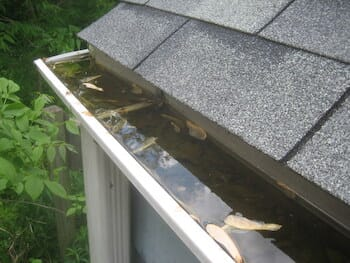 Gutter Cleaning from Simple Fix Home Repair and Renovation-2