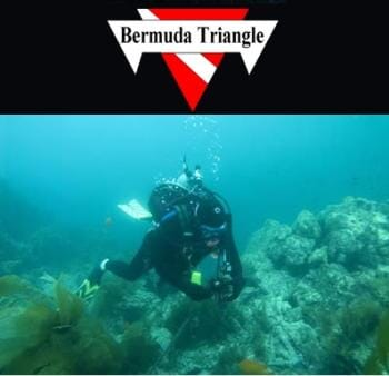 Bermuda Triangle - A complete open water SCUBA certification course valued at $399