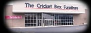 Reach Services Online Auction - $100 Gift Card from Cricket Box*