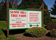 Sunny Hill Tree Farm - $25 Gift Certificate - 1118-10