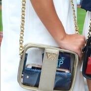 Kelly Wynne Handbags - Clear Mingle Mingle Mini in Moon