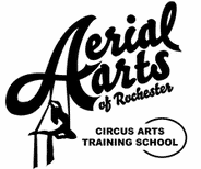 Aerial Arts of Rochester - Bungee Dance Party for up to 6 participants